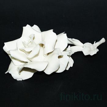 Декоративная роза, белая